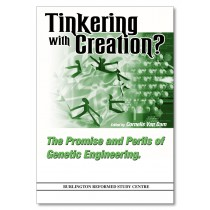 Tinkering with Creation?